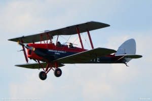 Tiger Moth G ANTE